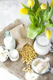 Fresh organic soy products:soy milk, soy yogurt, soy chese tofu,. Healthy organic soy products: soy flavour, milk, soy yogurt, soy chese tofu and soy beans Royalty Free Stock Images