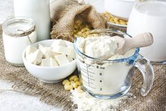 Fresh organic soy products:soy milk, soy yogurt, soy chese tofu,. Fresh organic soy products:soy milk, soy yogurt, soy chese tofu and soy beans Royalty Free Stock Photo
