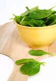 Fresh Organic Spinach Royalty Free Stock Photo