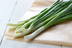 Fresh organic spring onion Stock Photo