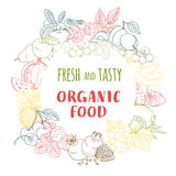 Fresh organic spring summer fruits and vegetables frame. Contour vector illustration