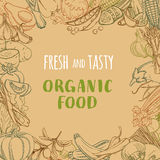 Fresh organic spring summer vegetables frame. Contour design veg Stock Photos