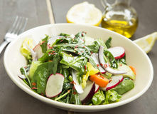 Fresh Organic Spring Vegetable Salad with Chilli Flakes Royalty Free Stock Photography