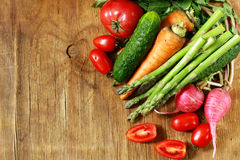 Fresh organic spring vegetables Stock Images