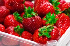 Fresh organic strawberries. Royalty Free Stock Image