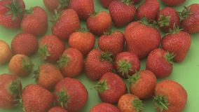 Fresh organic strawberries a green  background. Royalty Free Stock Images