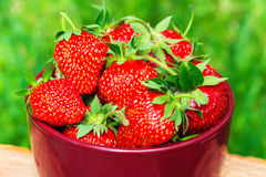 Fresh, organic strawberry in bowl, on wooden table, outdoors. Selective focus Royalty Free Stock Photo