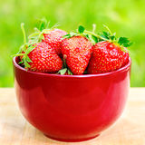 Fresh, organic strawberry in bowl, on wooden table, outdoors. Selective focus Royalty Free Stock Photography