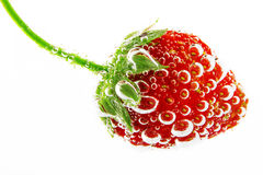 Fresh organic strawberry and bubbles underwater isolated Royalty Free Stock Photos