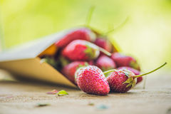 Fresh organic strawberry close-up on an old wooden background.  Royalty Free Stock Photography