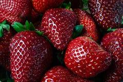 Fresh organic Strawberry fruit background. Top view closeup - Image stock photos