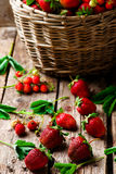 Fresh,organic strawberry in the old basket Stock Photo