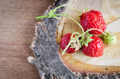 Fresh organic strawberry on wooden background. Fresh ripe organic strawberry on wooden background. Rustic style. Selective focus Royalty Free Stock Photo