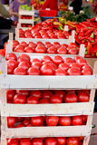 Fresh organic tomato in crates on farmer market ready to sale Royalty Free Stock Photography