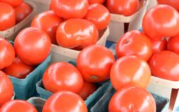 Fresh and organic tomato Royalty Free Stock Images