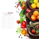Fresh organic tomatoes Stock Photography