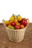 Fresh organic tomatoes Stock Image