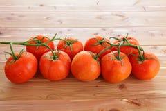 Fresh organic tomatoes Stock Images