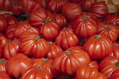 Fresh Organic Tomatoes Stock Photo