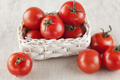 Fresh organic tomatoes in a basket Royalty Free Stock Images