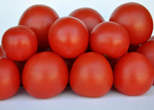 Fresh organic tomatoes Royalty Free Stock Images