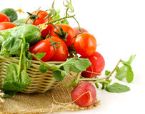 Fresh organic tomatoes and cucumbers in a basket Stock Photo