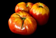 Fresh organic tomatoes on a dark background. Selective focus Royalty Free Stock Photography