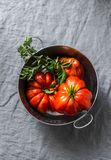 Fresh organic tomatoes in metal bowl on grey background Stock Photography