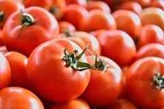 Fresh organic tomatoes on street market stall Royalty Free Stock Photos