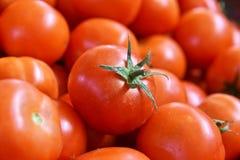 Fresh organic tomatoes on street market stall Royalty Free Stock Photo
