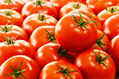 Fresh organic tomatoes on street stall Royalty Free Stock Image
