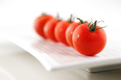 Fresh organic tomatoes on a white ceramic plate Royalty Free Stock Photo