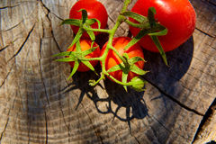 Fresh organic tomatoes on wooden table Royalty Free Stock Photography