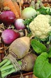Fresh Organic Vegetables Stock Images