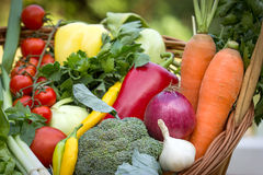 Fresh organic vegetables Royalty Free Stock Photos
