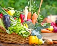 Fresh organic vegetables. In wicker basket Royalty Free Stock Image