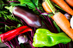 Fresh Organic Vegetables. Autumn Harvest Concept Royalty Free Stock Image