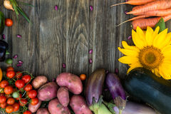 Fresh Organic Vegetables. Autumn Harvest Concept. Potatoes, toma Stock Photos