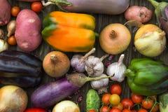 Fresh Organic Vegetables. Autumn Harvest Concept. Potatoes, toma Stock Images