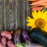 Fresh Organic Vegetables. Autumn Harvest Concept. Potatoes, toma Royalty Free Stock Photo