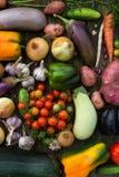 Fresh Organic Vegetables. Autumn Harvest Concept. Potatoes, toma Royalty Free Stock Photos