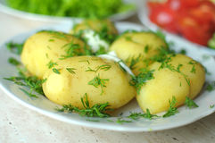 Fresh organic vegetables and boiled new potatoes on the plates Stock Photos