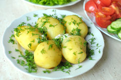 Fresh organic vegetables and boiled new potatoes on the plates Stock Images