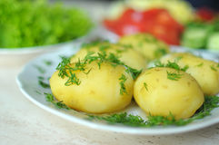 Fresh organic vegetables and boiled new potatoes on the plates Royalty Free Stock Photo