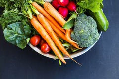 Fresh organic vegetables bowl with carrots, cauliflower, broccol. I, tomatoes, mushrooms, radishes on wooden board Royalty Free Stock Photography