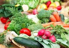 Fresh organic vegetables - closeup Royalty Free Stock Photography