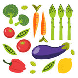 Fresh organic vegetables colorful set Stock Image