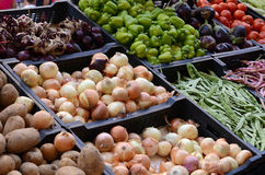 Fresh and organic vegetables at farmers market. Outdoor Royalty Free Stock Photos