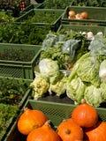 Fresh organic vegetables at farmers market Stock Photography