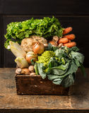 Fresh Organic Vegetables From Garden In Old Rustic Wooden Box Royalty Free Stock Image
